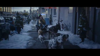 Alka-Seltzer Plus TV Spot, 'The Cold Truth: Dog Walker'