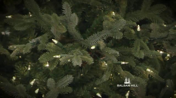Balsam Hill TV Spot, 'Brand All New Free Shipping' - Thumbnail 3