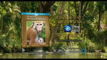 Monkey Kingdom Blu-ray and Digital HD TV Spot - Thumbnail 10