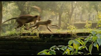 Monkey Kingdom Blu-ray and Digital HD TV Spot - Thumbnail 2