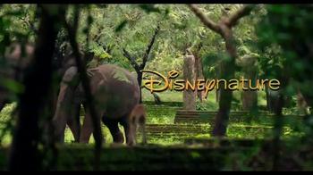 Monkey Kingdom Blu-ray and Digital HD TV Spot - Thumbnail 3
