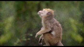Monkey Kingdom Blu-ray and Digital HD TV Spot - Thumbnail 5
