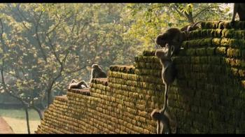 Monkey Kingdom Blu-ray and Digital HD TV Spot - Thumbnail 6