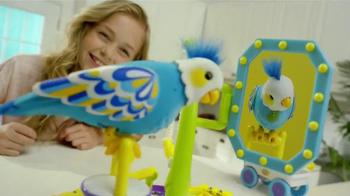 Little Live Pets Clever Keet TV Spot, 'Talking Bird' - Thumbnail 4