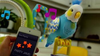 Little Live Pets Clever Keet TV Spot, 'Talking Bird' - Thumbnail 6