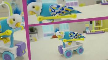 Little Live Pets Clever Keet TV Spot, 'Talking Bird' - Thumbnail 8