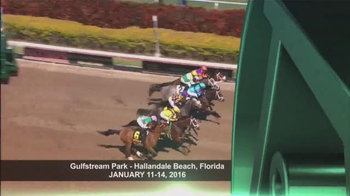 2016 Thoroughbred Owner Conference TV Spot, 'Owner Conference' - Thumbnail 2