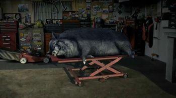 STA-BIL Storage TV Spot, 'Hog' - 779 commercial airings
