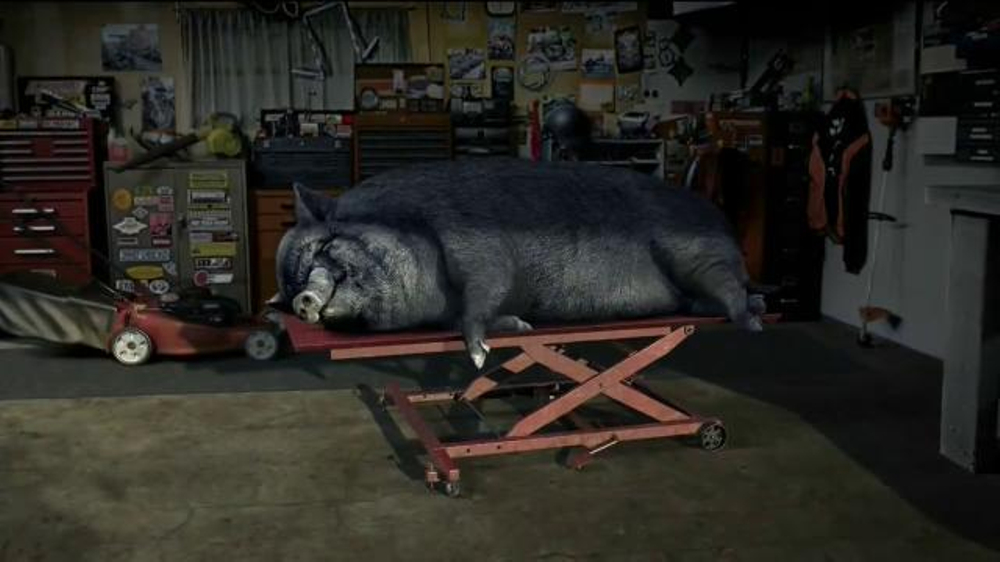 STA-BIL Storage TV Commercial, 'Hog'