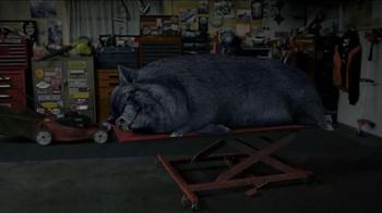STA-BIL Storage TV Spot, 'Hog' - Thumbnail 5