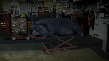 STA-BIL Storage TV Spot, 'Hog' - Thumbnail 6