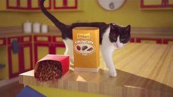 Friskies Tender & Crunchy Combo TV Spot, 'That's Just What Happens'