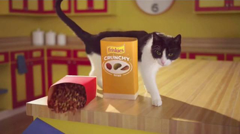 Friskies Tender & Crunchy Combo TV Spot, 'That's Just What Happens' - 10138 commercial airings