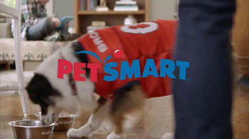 PetSmart TV Spot, 'Gameday' Song by Queen - Thumbnail 1