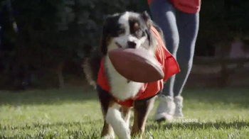 PetSmart TV Spot, 'Gameday' Song by Queen - Thumbnail 4