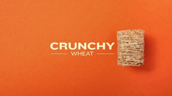 Frosted Mini-Wheats TV Spot, 'Kidulting' Song by Supergrass - Thumbnail 5