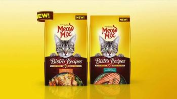 Meow Mix Bistro Recipes TV Spot, 'Shoes' - Thumbnail 6