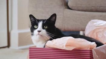 Meow Mix Bistro Recipes TV Spot, 'Shoes' - Thumbnail 3
