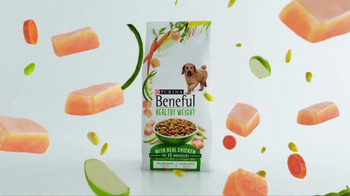 Purina Beneful Healthy Weight TV Spot, 'Jessica and Riley' - Thumbnail 6