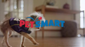 PetSmart TV Spot, 'Rivalries' Song by Queen - Thumbnail 1