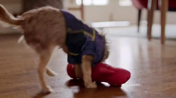 PetSmart TV Spot, 'Rivalries' Song by Queen - Thumbnail 2