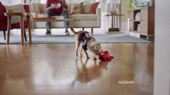 PetSmart TV Spot, 'Rivalries' Song by Queen - Thumbnail 4