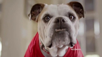 PetSmart TV Spot, 'Rivalries' Song by Queen - Thumbnail 5