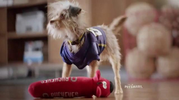 PetSmart TV Spot, 'Rivalries' Song by Queen - Thumbnail 6