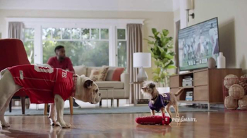 PetSmart TV Spot, 'Rivalries' Song by Queen - Thumbnail 8