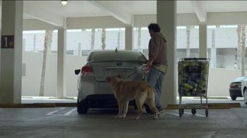 Subaru A Lot to Love Event TV Spot, 'Make a Dog's Day' - Thumbnail 1