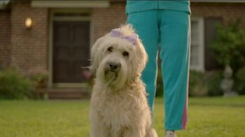 Subaru A Lot to Love Event TV Spot, 'Make a Dog's Day' - Thumbnail 6