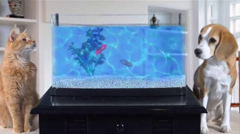 Hexbug AquaBot Wahoo TV Spot, 'Buds & Suds' - Thumbnail 7