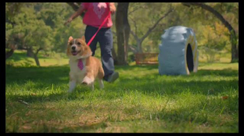 Purina Beneful Originals TV Spot, 'Becky and Einstein' - Thumbnail 1