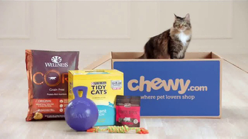 Chewy.com TV Spot, 'Makes Shopping for Pets Easy' - Thumbnail 7