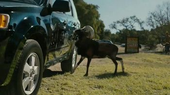 Farmers Insurance TV Spot, 'Hall of Claims: Billy Goat Ruffians'