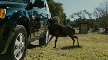 Farmers Insurance TV Spot, 'Hall of Claims: Billy Goat Ruffians'