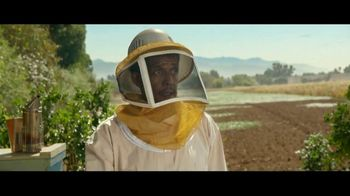 Ally Bank TV Spot, 'Nothing Stops Us: Bees' - 713 commercial airings