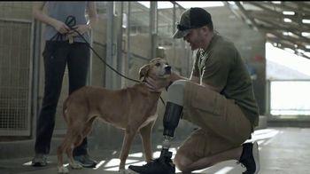 Pedigree TV Spot, 'Rescatada' [Spanish]