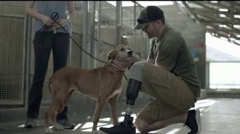 Pedigree TV Spot, 'Rescatada' [Spanish] - Thumbnail 7