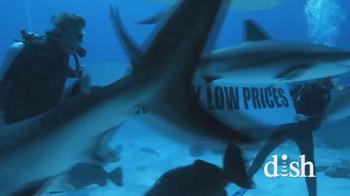 Dish Network TV Spot, 'Discovery Channel: Shark Week' - Thumbnail 5