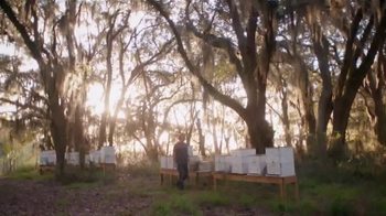 Triscuit TV Spot, 'Simple Inspiration With Savannah Bee' - Thumbnail 1