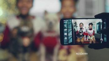 PetSmart TV Spot, 'Good Boy' Song by Queen - Thumbnail 6