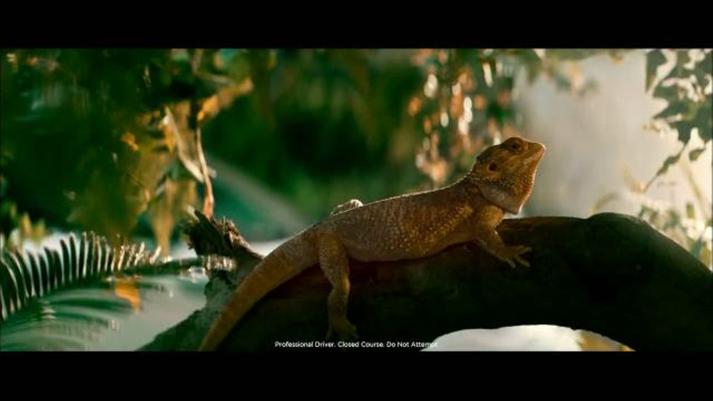 Land Rover Season of Adventure Sales Event TV Commercial, 'Life's a Jungle'