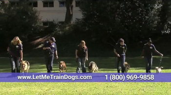 Animal Behavior College TV Spot, 'Reward-Based Dog Training' - 188 commercial airings