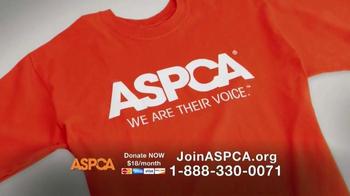 ASPCA TV Spot, 'This Holiday Season' Featuring Lori Loughlin - Thumbnail 7