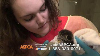 ASPCA TV Spot, 'This Holiday Season' Featuring Lori Loughlin