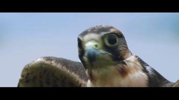 Wheels Up TV Spot, 'Up the Way You Fly' Song by Sugar Ray - Thumbnail 5