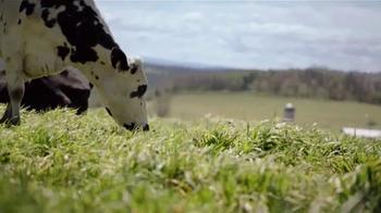 Organic Valley Half & Half TV Spot, 'The World's Best Coffee' - Thumbnail 5