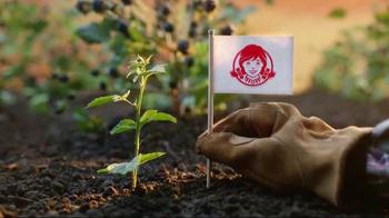 Wendy's Summer Berry Chicken Salad TV Spot, 'Summer' - Thumbnail 5