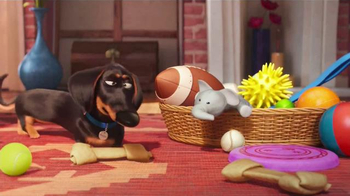 McDonald's Happy Meal TV Spot, 'The Secret Life of Pets: Where Do They Go?' - Thumbnail 4